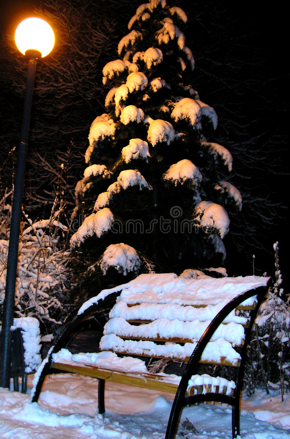 Download Winter bench stock photo. Image of bush, spruce, post, bough - 143634