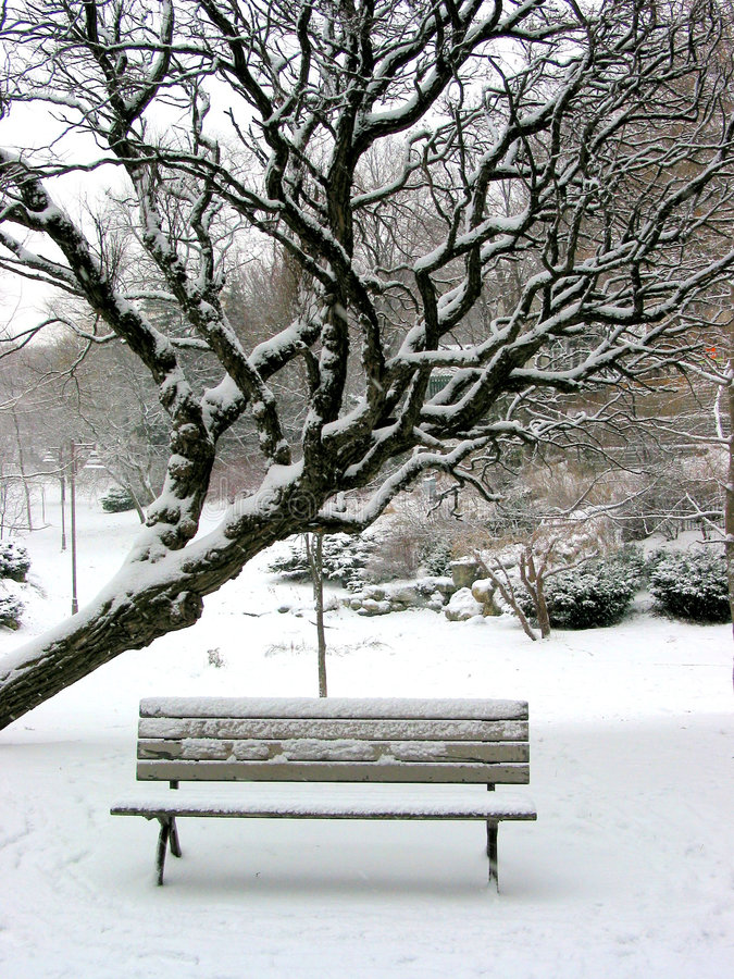 Free Winter Bench Royalty Free Stock Images - 449799