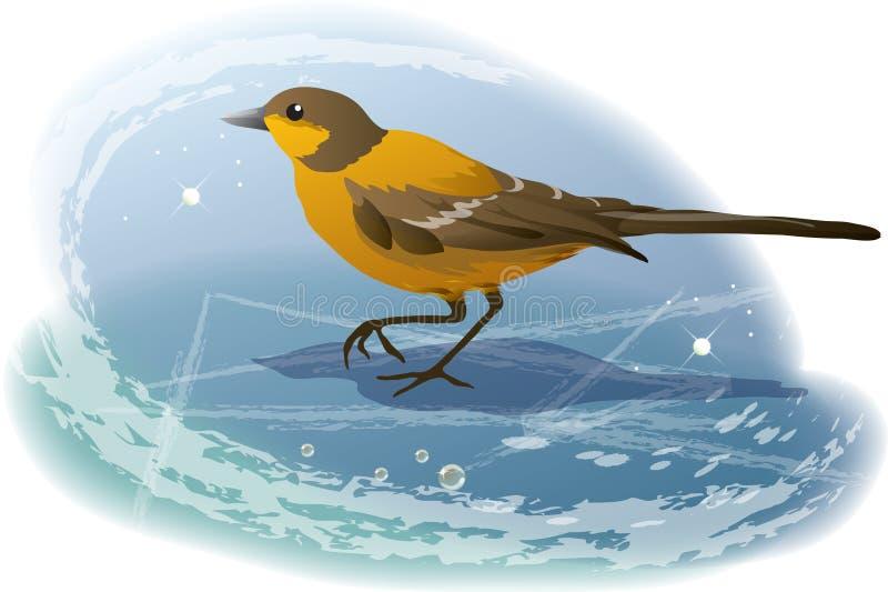 Download Winter birdie stock vector. Image of curl, bird, nature - 7595911