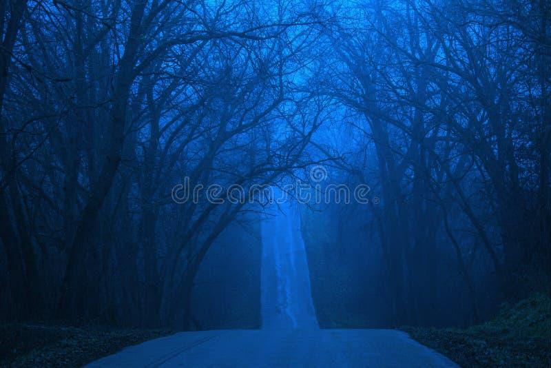 Winter-Blau lizenzfreie stockbilder