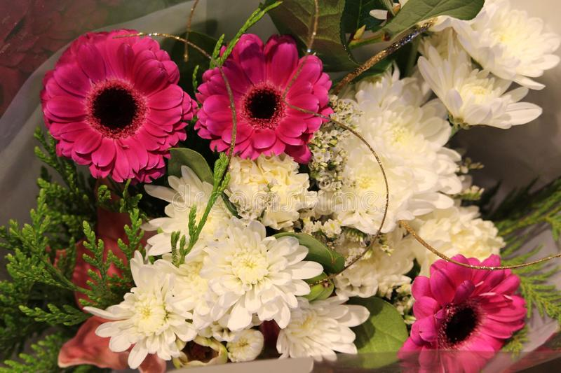 Winter bouquet of flowers stock photo. Image of winter - 106920234
