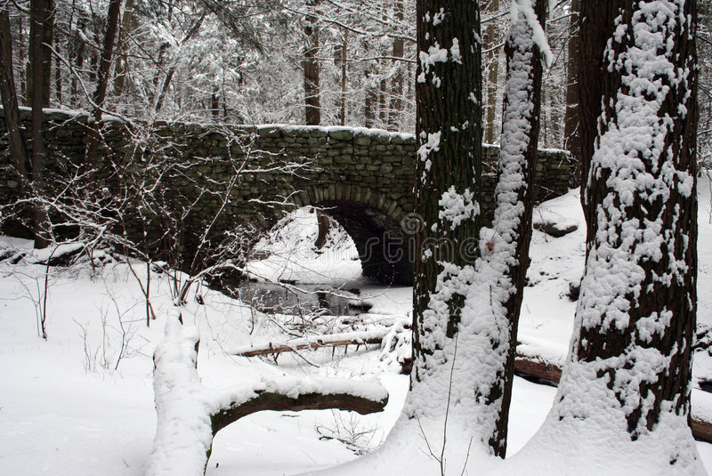 Download Winter Bridge stock photo. Image of woods, arch, trees - 2000472