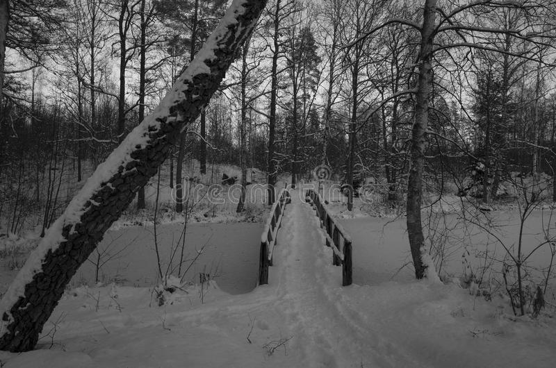 Winter bridge Sweden. Black and white winter landscape with snow in Swedish forest. And a wood bridge stock photo