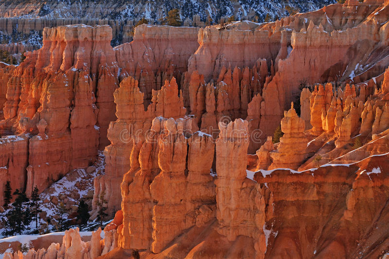 Winter, Bryce Canyon National Park stock photos