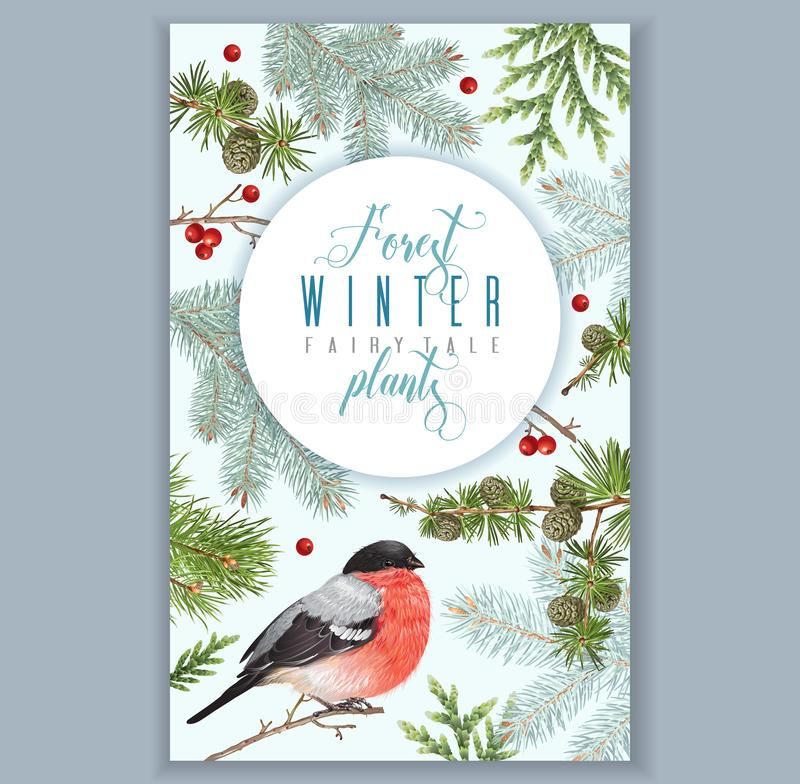 Winter bullfinch banner. Vector vintage banner with winter forest branches and bullfinch. Highly detailed winter design for greeting card, christmas party stock illustration