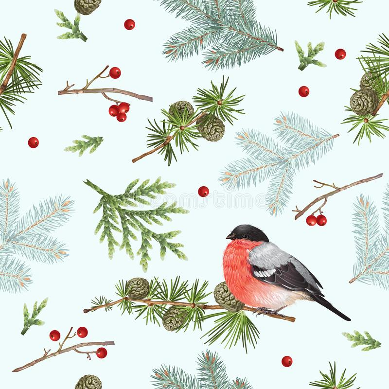 Winter bullfinch pattern. Vector seamless pattern with forest branches and bullfinch on white. Highly detailed background design for Christmas, new year, festive stock illustration