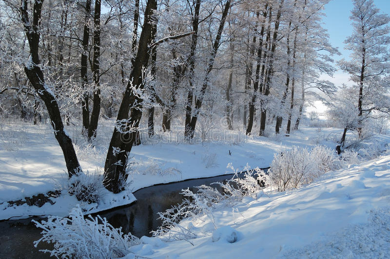 Winter calm frozen landscape with beautiful frosted trees royalty free stock photography