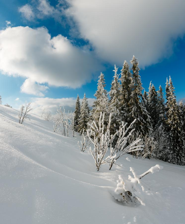 Winter calm mountain landscape with beautiful frosting trees and snowdrifts on slope Carpathian Mountains, Ukraine. Composite stock photos