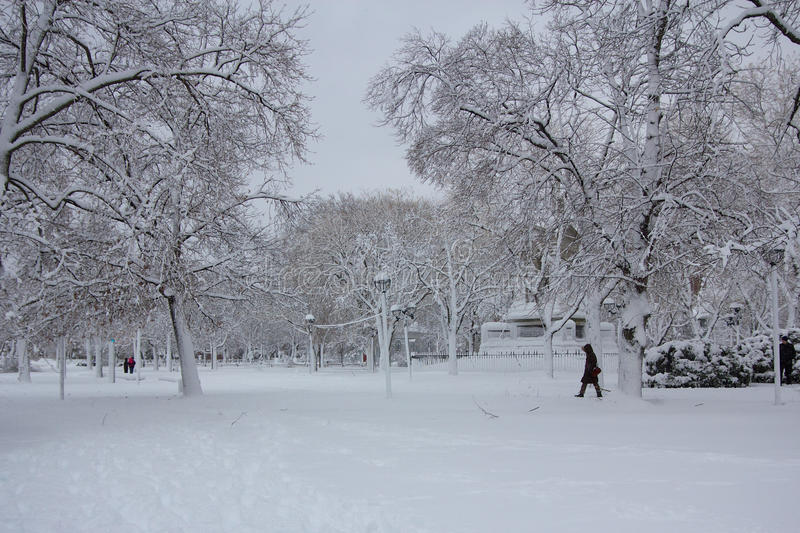 Winter at the Cambridge Common stock photography