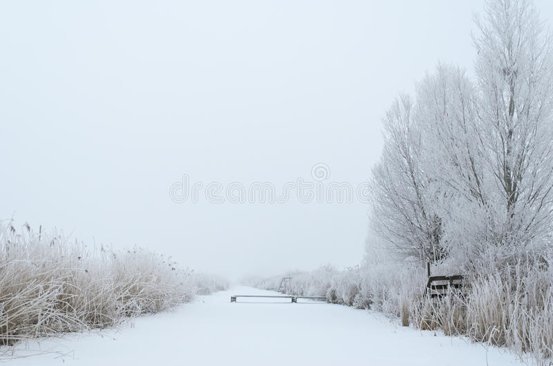 Download Winter canal in the fog stock photo. Image of rime, snow - 27786646