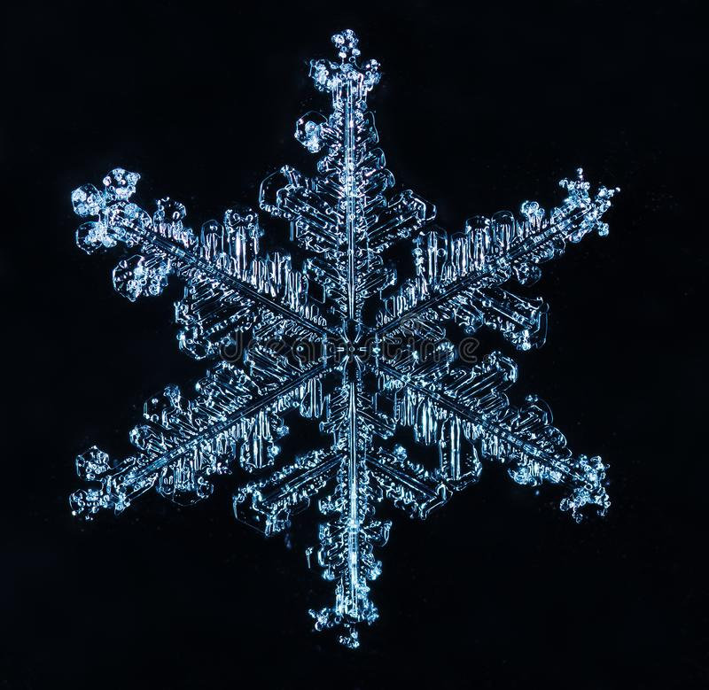 Winter card, photo real snowflakes stock photo
