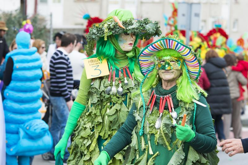 Winter Carnival in Pontevedra Spain. PONTEVEDRA, SPAIN - FEBRUARY 25, 2017: Detail of participants in the parade celebrated in the city, on the occasion of the stock images