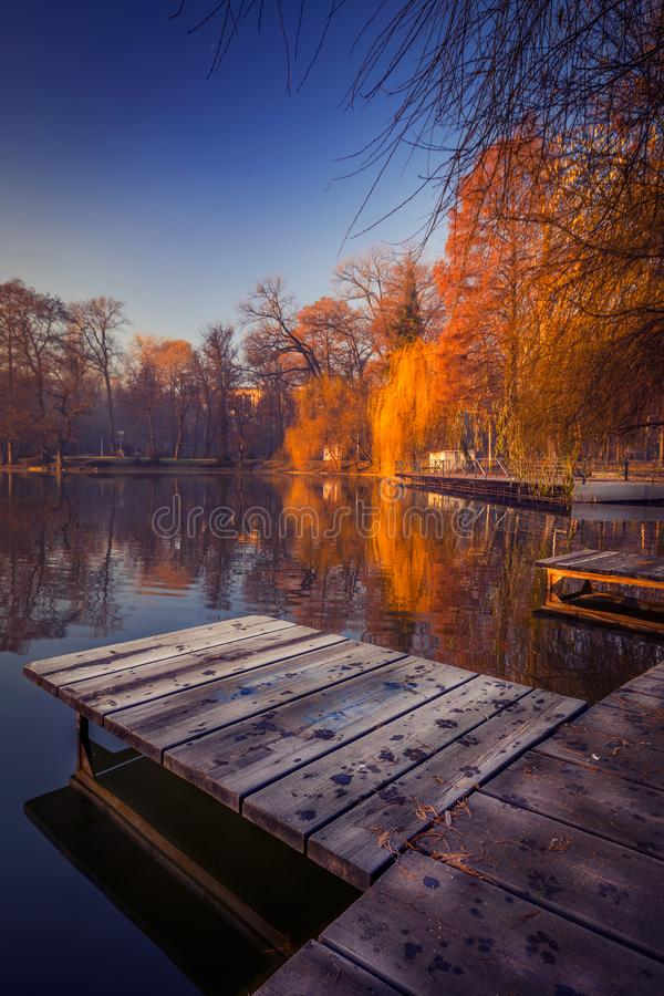 Winter in the park near the half frozen lake with pontoon in the stock photo