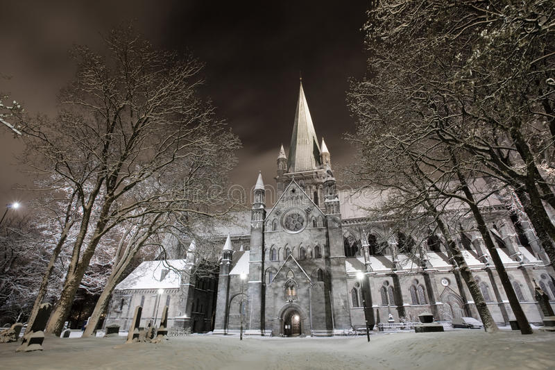 Winter Cathedral stock images