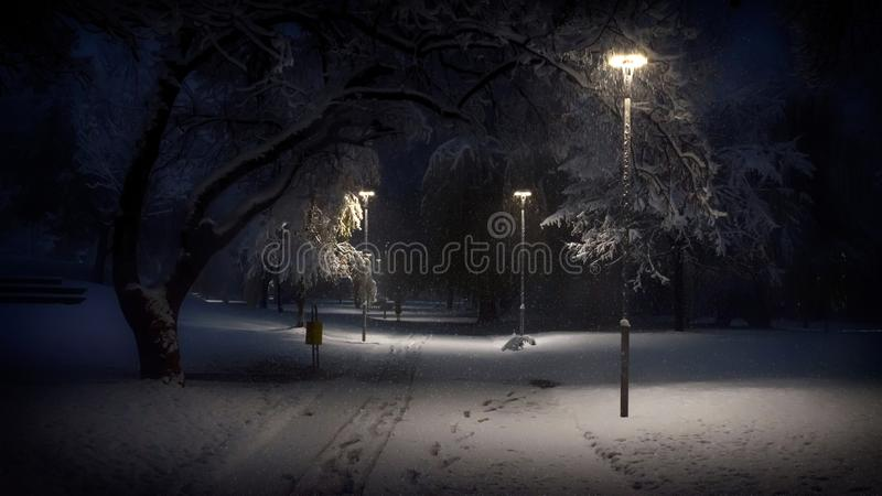 Early winter morning in the local park at snowfall royalty free stock image