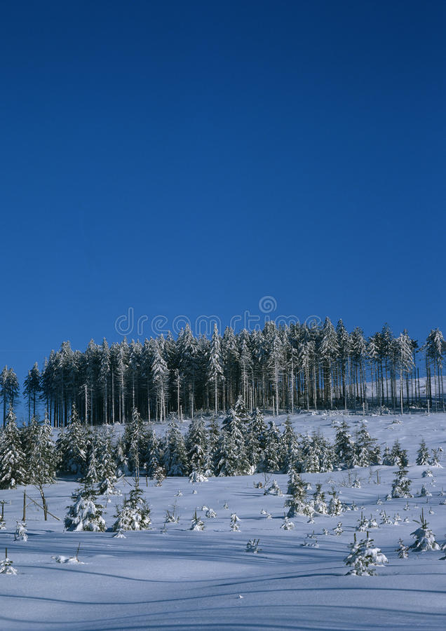 Download Winter chilling silence stock image. Image of peace, landscape - 18733569