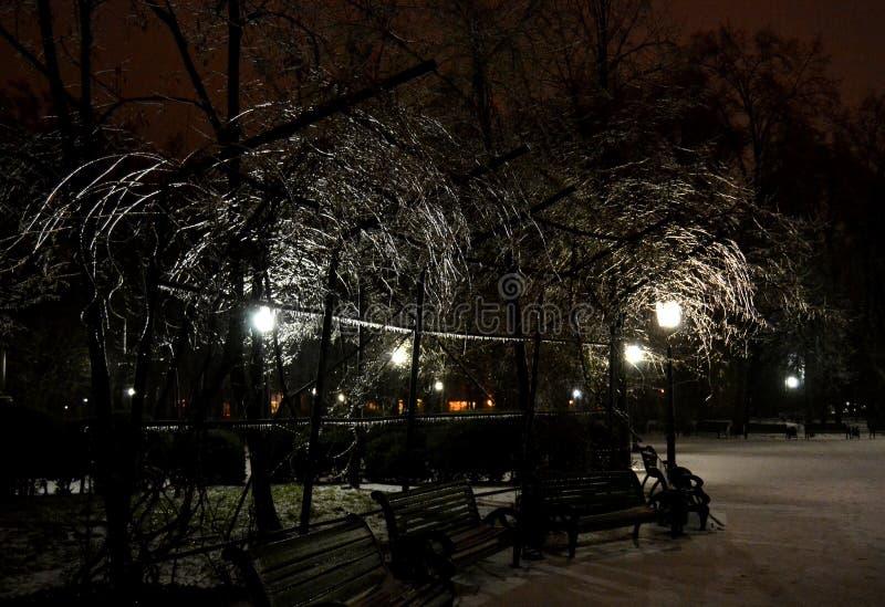 Winter in Chisinau stockbilder