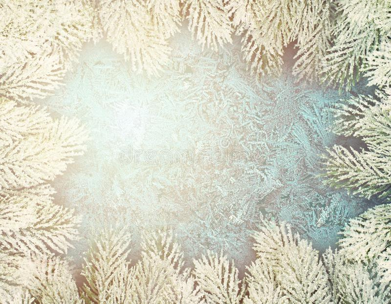 Winter Christmas background with green Xmas tree branch border and frost on frozen winter window.  stock photos