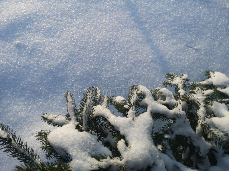 Winter and Christmas background royalty free stock images