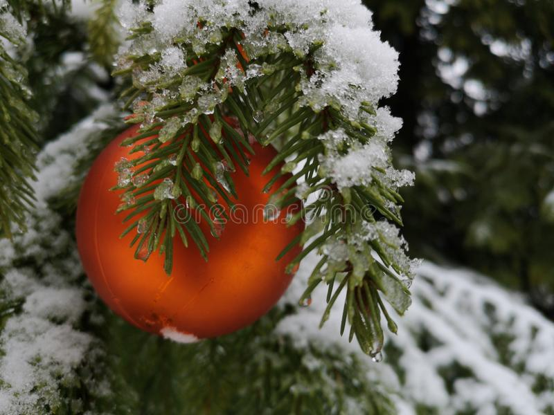 Winter and Christmas background royalty free stock photo