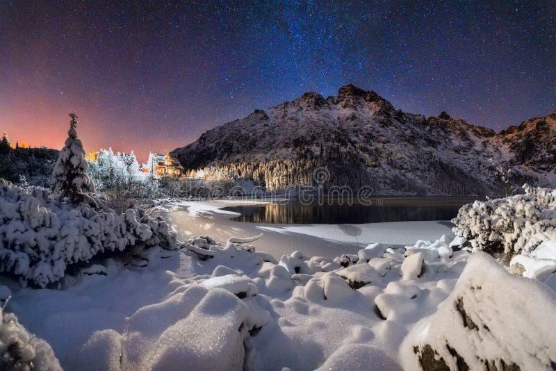 Winter christmas night royalty free stock image
