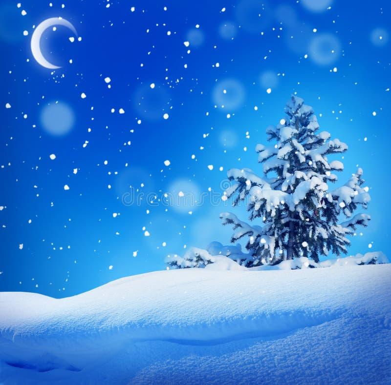 Winter christmass Nachtlandschaft lizenzfreies stockfoto