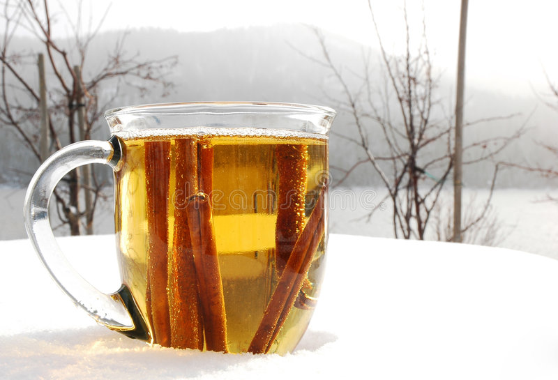 Winter Cider royalty free stock photography