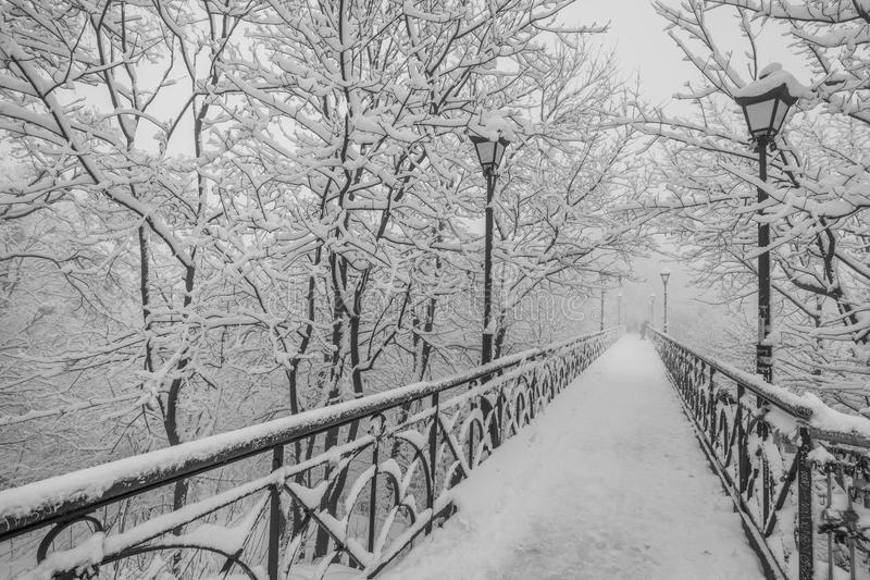 Winter city park. Lovers Bridge in Kiev. royalty free stock photography