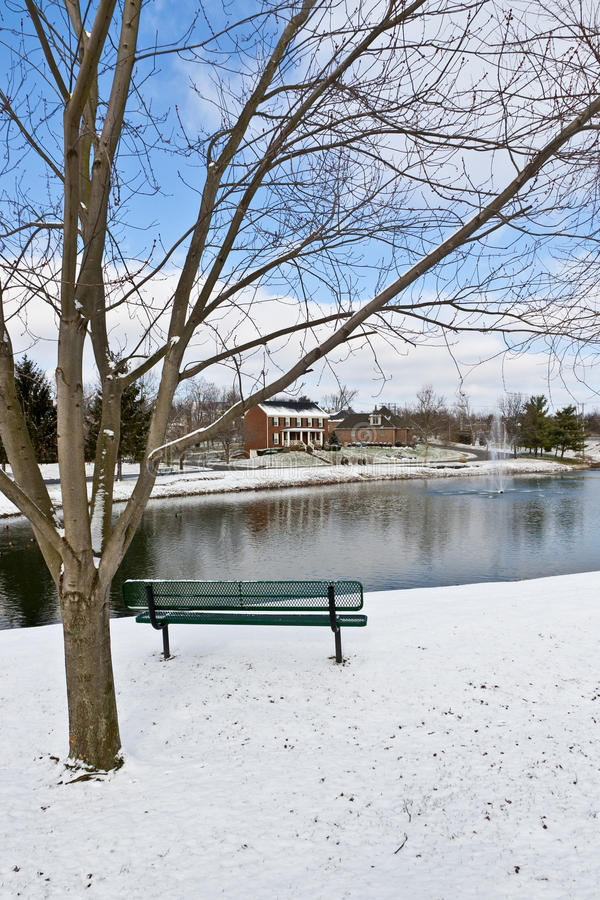 Download Winter City Scene With A Bench Near Pond Stock Image - Image: 22949753