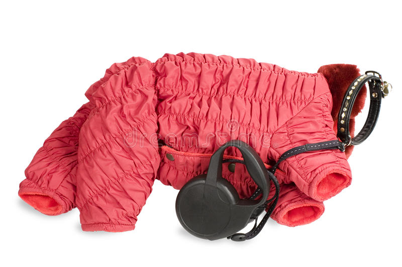 Download Winter Clothing And Leash For  Dog. Stock Photo - Image: 12699590