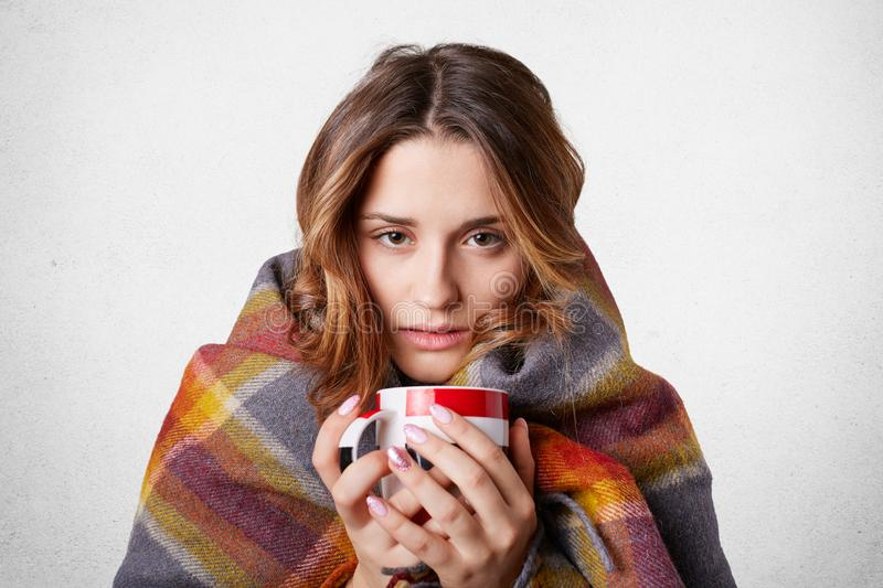 Winter cold sickness concept. Freezing beautiful woman wrapped in warm checkered plaid blanket, drinks hot beverage, tries to warm. Herself after spending time royalty free stock images