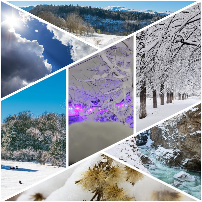 Winter collage of photos of a village house in Christmas lights, sleighing children, winter forest, dry flowers under snow, mounta stock photo