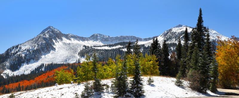 Winter in Colorado lizenzfreies stockbild