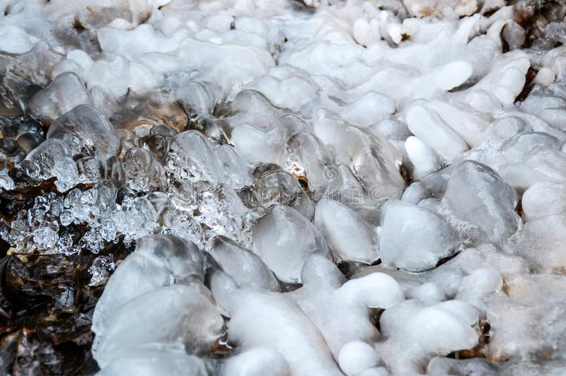 Frozen river. When the winter is coming and it is getting colder the river will freeze. This is the side of a river who starts to covered in ice soon royalty free stock photos