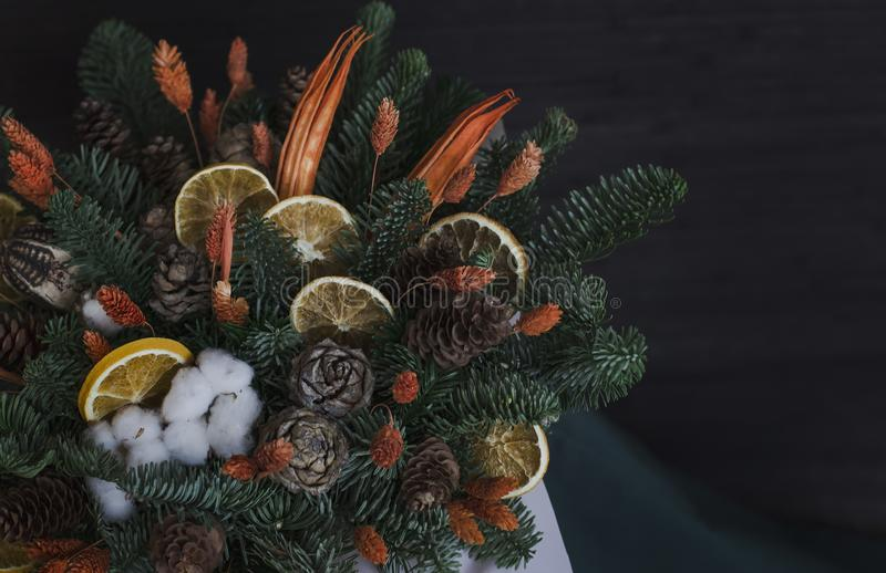 The winter composition of fir branches, dry oranges, cotton and stock photography