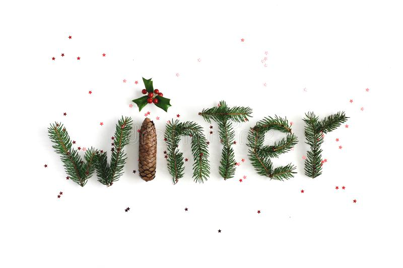 Winter composition. Word Winter made of different winter plants on white background. Flat lay, top view. stock images