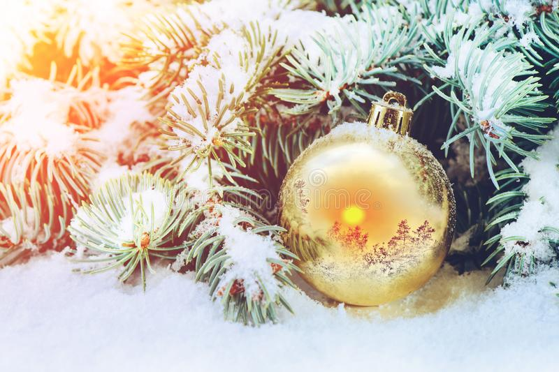 Winter concept, Christmas ball on a spruce branch in the snow with a reflection of the winter landscape royalty free stock photography