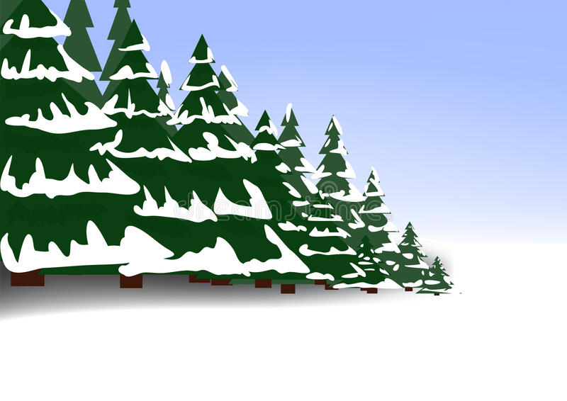Winter coniferous forest vector illustration