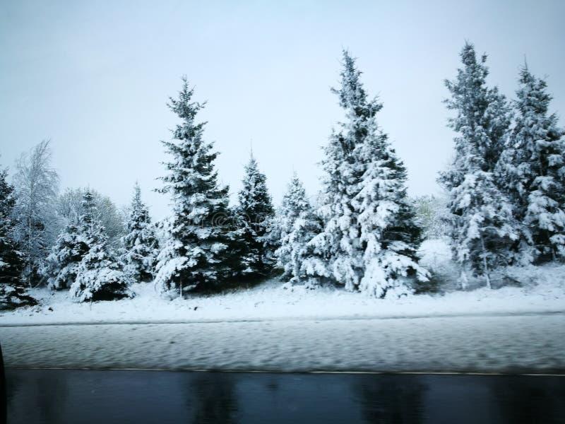Winter& x27 ; conte de s photos stock