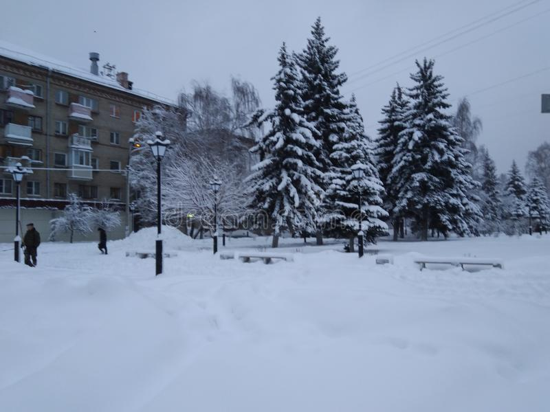 Winter covered the city with snow. Winter morning.Snow, Christmas trees, benches all in snow. The snow hid the path, the snow blanket covered all around stock images