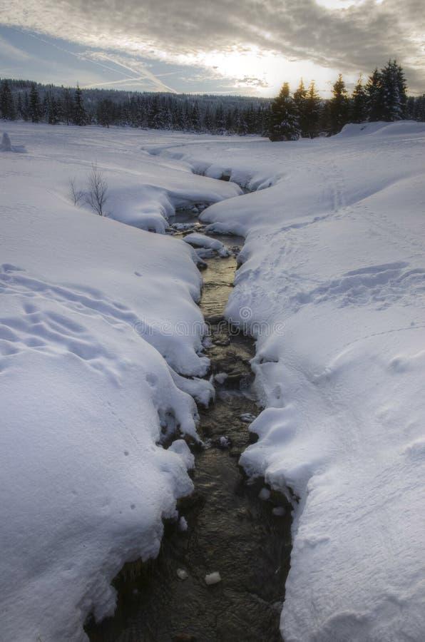 Winter creek royalty free stock photos