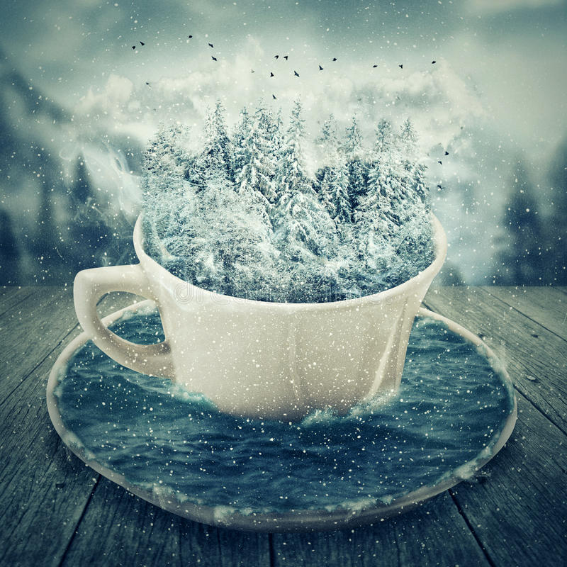 Free Winter Cup Stock Image - 62648141