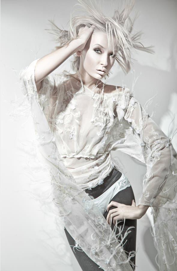 Winter-Dame stockbild