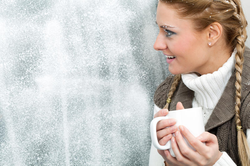 Download Winter day stock photo. Image of holiday, magnificent - 17585072