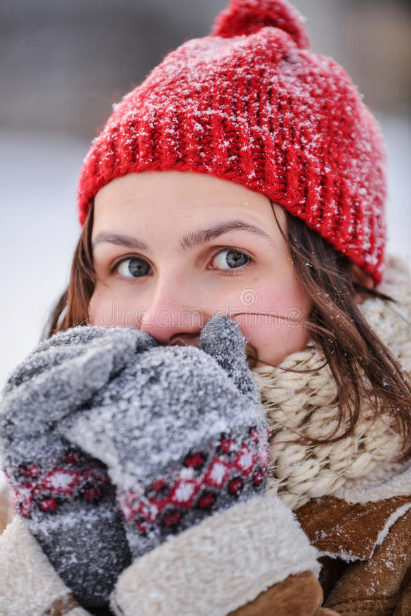 Download Winter Day Stock Photography - Image: 29147482