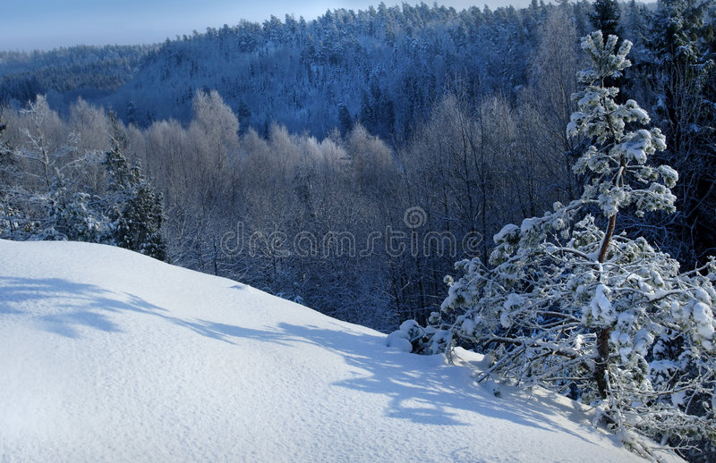 Download Winter day stock photo. Image of nature, snow, winter, landscape - 459890