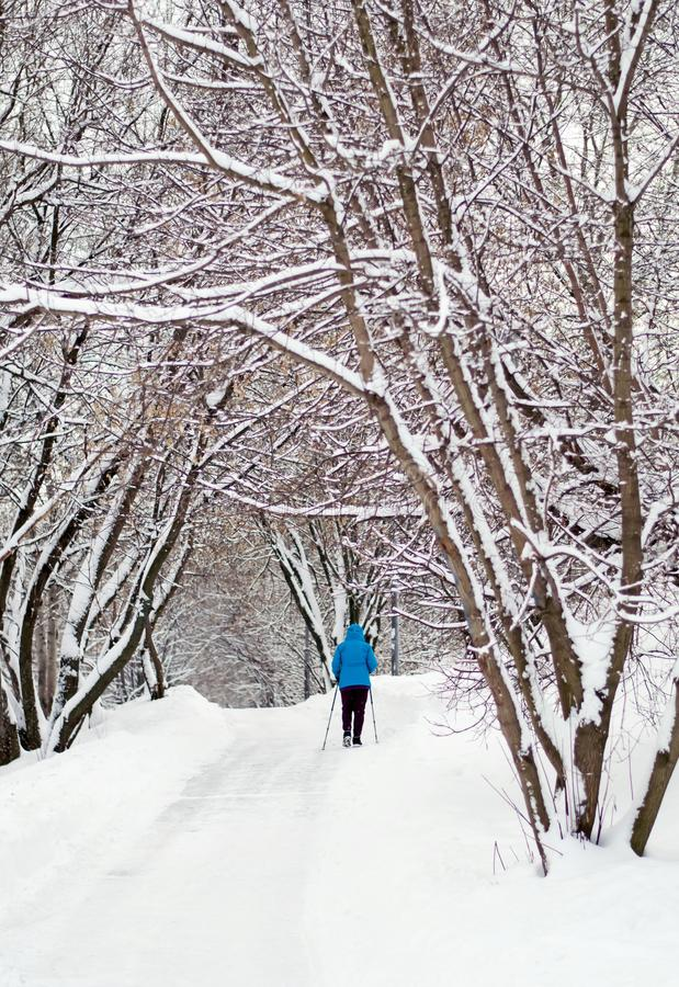 Winter day in the Park. Snow, rest. A walk in the Park. Winter walk in the snow-covered Park. Fresh air royalty free stock photos