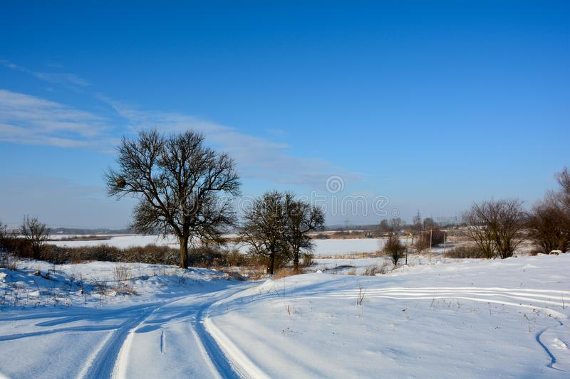 Winter in Demydiv, Ukraine. Snowy road with trees aside stock photography