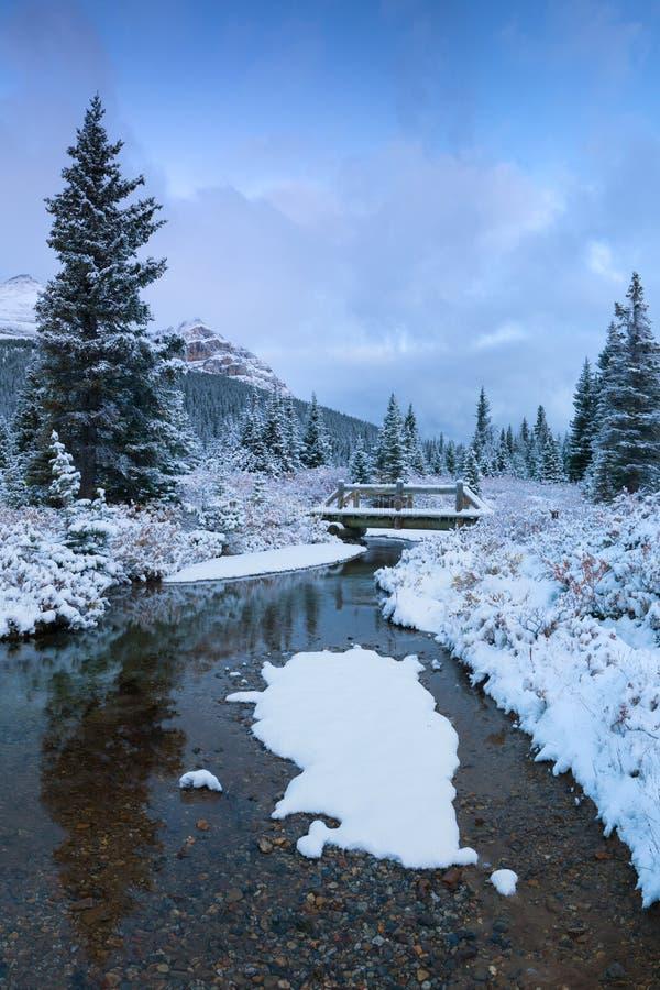 Winter in den Bergen beugen Nationalpark-Alberta Canada First-Schnee See-Banffs im Waldschönen Weihnachten stockfotografie