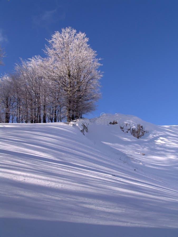 Winter in den Ciucas Bergen stockfoto